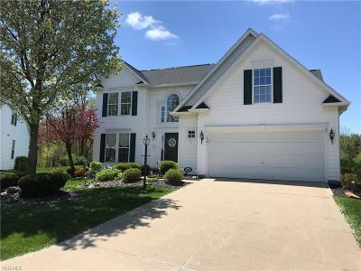 Medina County Single Family Home Active Under Contract: 4395 Belmont Court