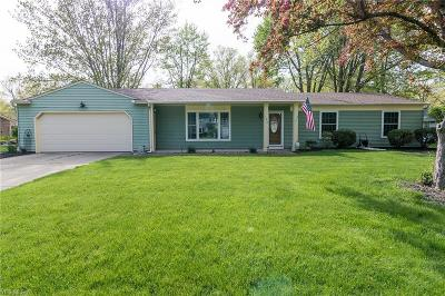 Single Family Home Contingent: 196 Parsons Dr