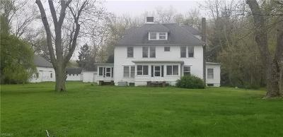 Mentor, Mentor-on-the-lake Single Family Home For Sale: 8800 Headlands Road