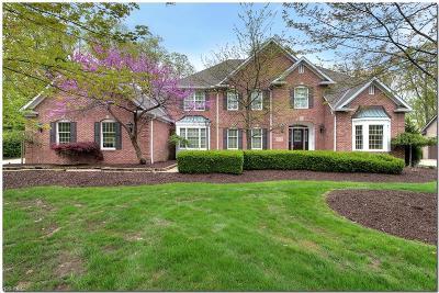 Broadview Heights Single Family Home For Sale: 1257 Homestead Creek