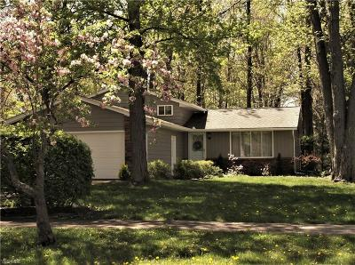 North Ridgeville Single Family Home For Sale: 6284 Ridge Plaza Dr
