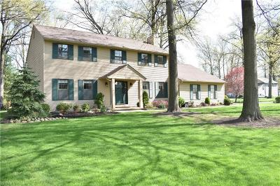 Avon Lake Single Family Home For Sale: 32372 Orchard Park Drive
