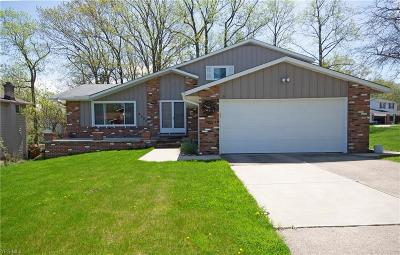 Parma Single Family Home For Sale: 2585 Nelson Blvd