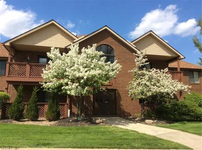 Broadview Heights Condo/Townhouse For Sale: 8615 Scenicview Dr #206