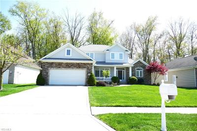 Willoughby Single Family Home For Sale: 38702 Chagrin Mills Court