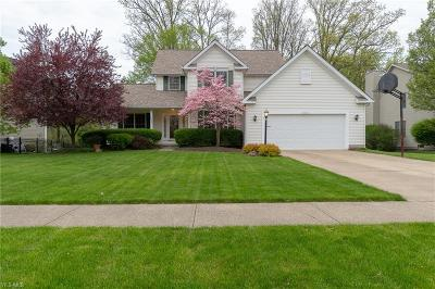 Brunswick Single Family Home For Sale: 3521 Abington Ct