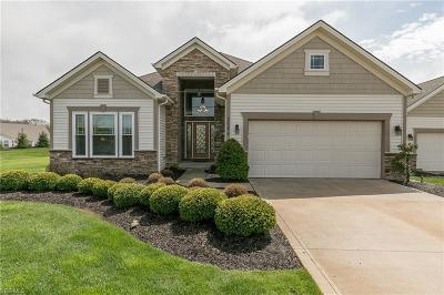Strongsville Single Family Home For Sale: 22259 Olde Creek Trail