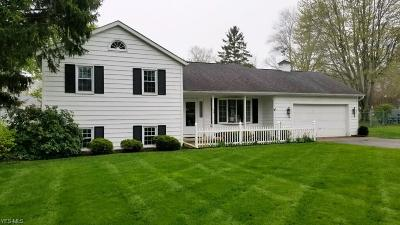 Painesville OH Single Family Home Contingent: $174,900