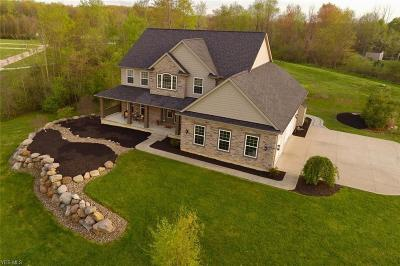 Medina County Single Family Home For Sale: 5680 Clear Spring Ct