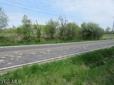 Lorain County Residential Lots & Land For Sale: V/L East Hamilton St