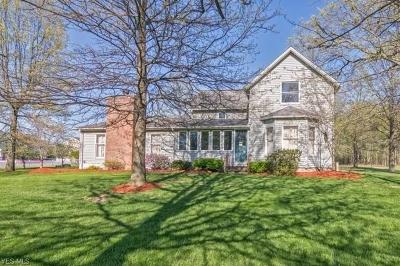 Single Family Home For Sale: 4865 Case Road