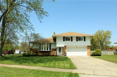 Seven Hills Single Family Home For Sale: 409 Longridge Dr