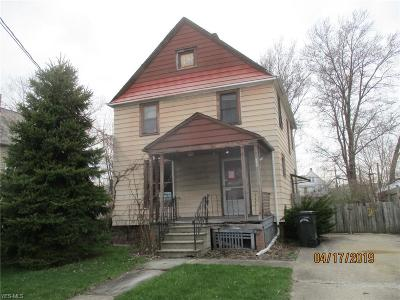 Lorain County Single Family Home For Sale: 125 Homer Ct