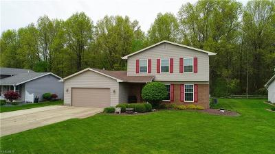 Boardman OH Single Family Home For Sale: $182,900