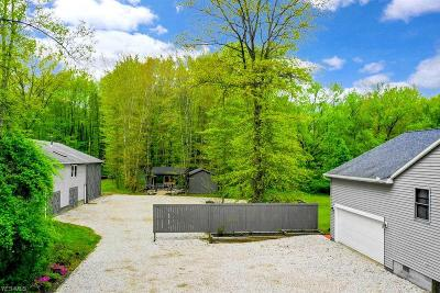 Single Family Home For Sale: 9393 Wagner Rd