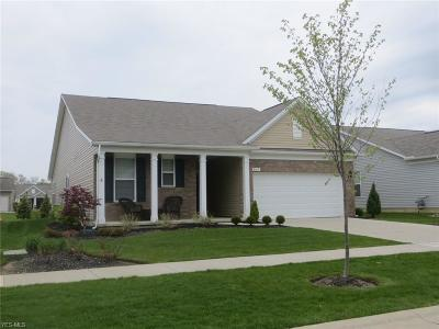 Mentor Single Family Home Contingent: 8017 Amberley Dr