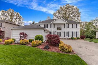 Strongsville Single Family Home For Sale: 17135 Greenwood Dr