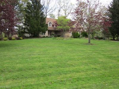 Willoughby Hills Single Family Home For Sale: 2861 Loreto Drive