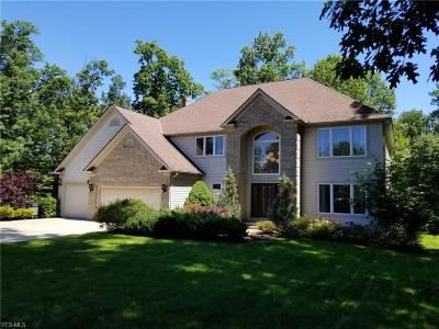 Solon Single Family Home For Sale: 7010 Woodduck Court