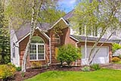 Chardon Single Family Home For Sale: 140 Pine Hollow Circle