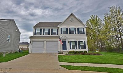 Willoughby Single Family Home Active Under Contract: 3800 Pinnacle Court