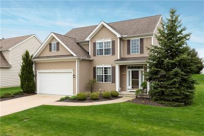 Single Family Home For Sale: 33317 Ambleside Dr