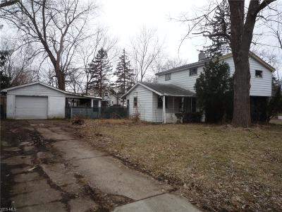 Northfield Single Family Home For Sale: 10338 Electric Boulevard