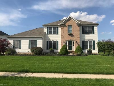 Aurora Single Family Home Contingent: 45 Chadwick Dr