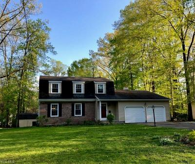 Canfield Single Family Home For Sale: 251 Chapel Lane
