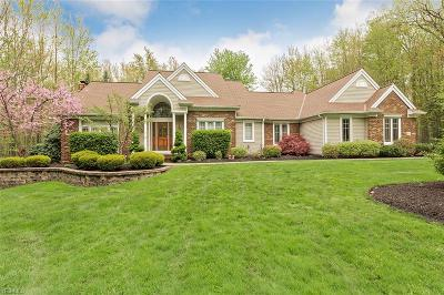 Lake County Single Family Home For Sale: 9263 Regency Woods Drive