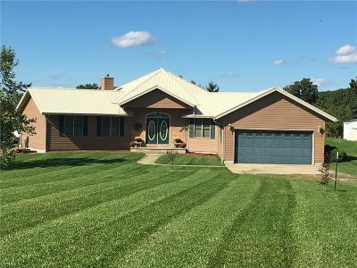 Ashland County Single Family Home For Sale: 650 State Route 302