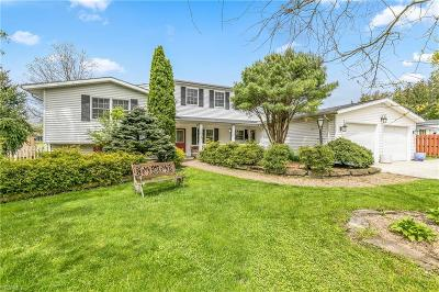 Single Family Home For Sale: 13390 Caves Rd