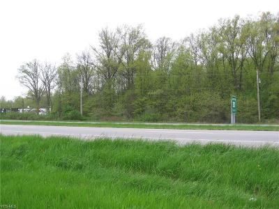 Lorain County Residential Lots & Land For Sale: Grove Ave