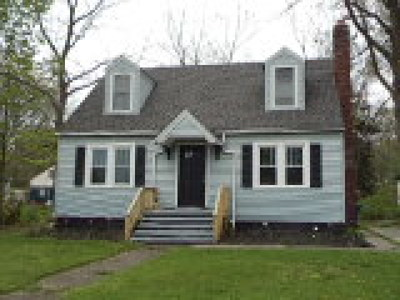 Painesville OH Single Family Home For Sale: $87,500