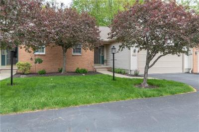 Canfield Condo/Townhouse For Sale: 211 Talsman Drive #3