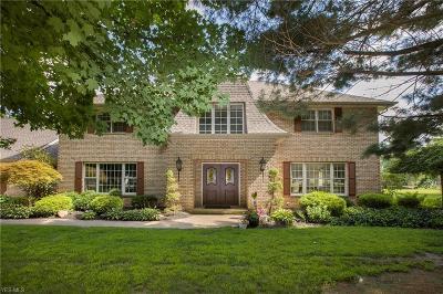 Avon, Avon Lake Single Family Home For Sale: 38701 Detroit Rd