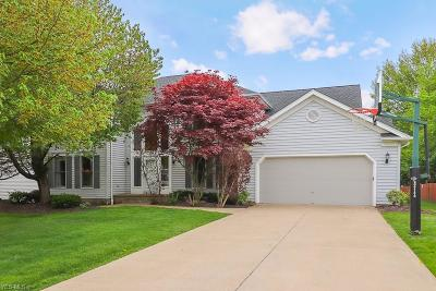Solon Single Family Home Contingent: 6572 Woodbury Dr
