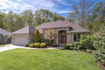 Solon Single Family Home Active Under Contract: 6574 Hyllwynd Circle