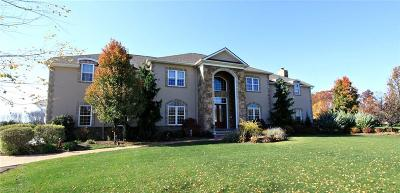 Lake County Single Family Home For Sale: 10640 Bayshire Trail