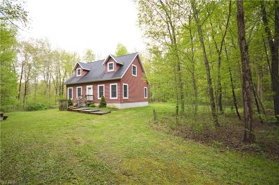 Conneaut Single Family Home For Sale: 6174 Root Road