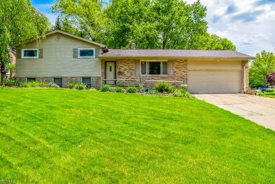 Canton Single Family Home For Sale: 4204 Norman Ave Northwest