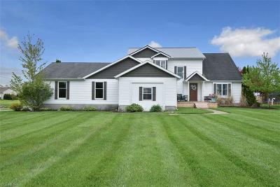 Wellington Single Family Home For Sale: 48375 State Route 18