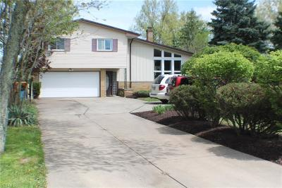 Seven Hills Single Family Home Contingent: 2501 East Pleasant Valley Rd