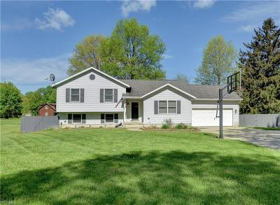 Warren Single Family Home Active Under Contract: 4264 Palmyra Road