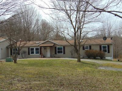 Rogers Single Family Home Active Under Contract: 48945 State Route 154