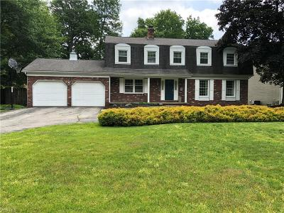 Youngstown Single Family Home For Sale: 445 Rockland Drive