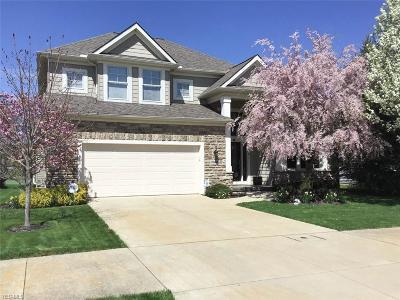 Avon Single Family Home For Sale: 33476 Lyons Gate Run