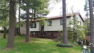 Ravenna Single Family Home For Sale: 2986 Sandy Lake Rd
