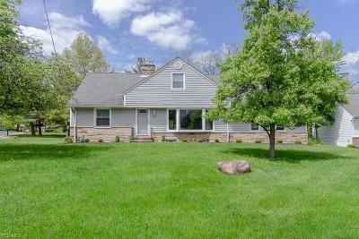 Brecksville Single Family Home For Sale: 8270 Brecksville Rd