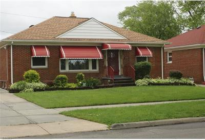 Cleveland Single Family Home For Sale: 4141 Feiner Drive